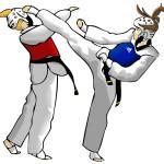 Правила в соревнованиях по тэквондо