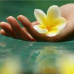 «Красота - это здоровье»