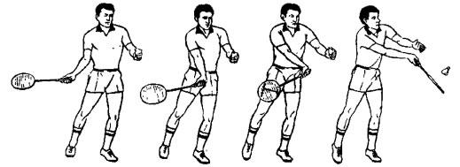 Презентация по физической культуре 3 час урока физической культуры обучение игре бадминтон  (5 класс)